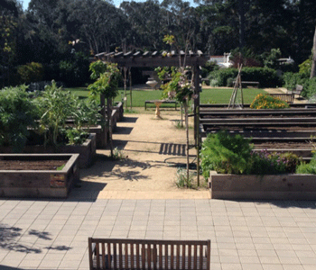 The gardens at the Edgewood Center provides an outdoor learning environment.