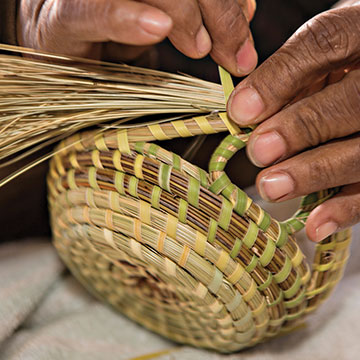 Gullah artisan weaving a sweetgrass basket. Photo: Richard Ellis / Alamy Stock Photo