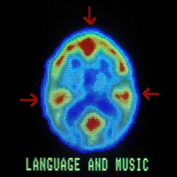 Music could actually use more parts of our brain than any other function, science suggests.