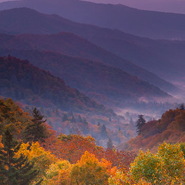 Fall colors in the Great Smoky Mountains.