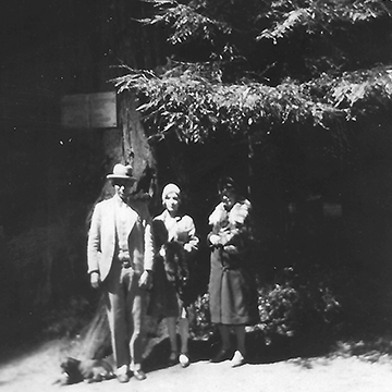 The author's grandparents and an unidentified friend or relative, beneath the Father of the Forest, a 251-foot redwood in Big Basin Redwoods State Park.