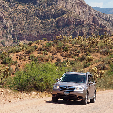 Jane Hall took her Subaru Forester on an adventure to recreate a 1929 road trip.